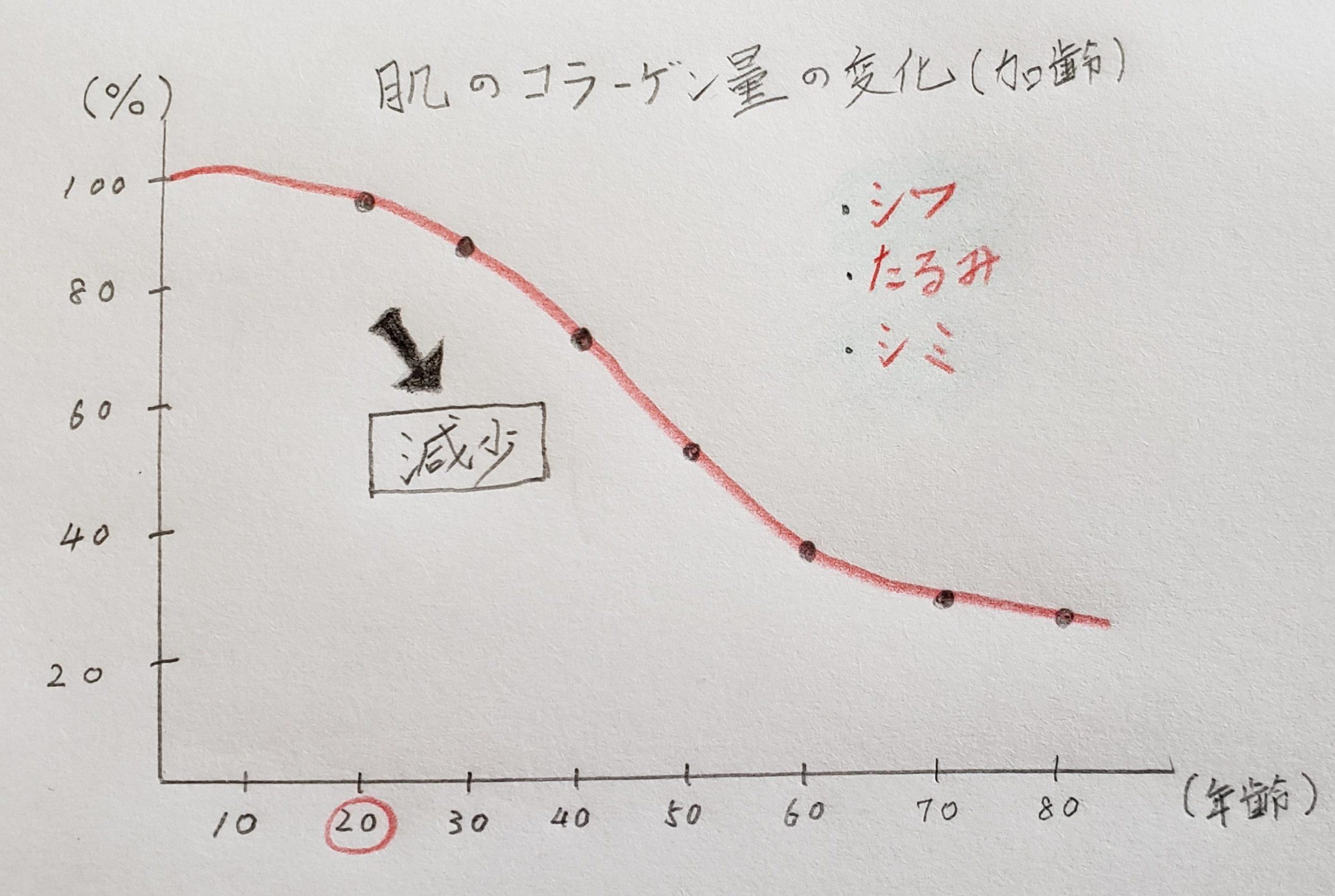 加齢による肌のコラーゲン量の減少をまとめた図