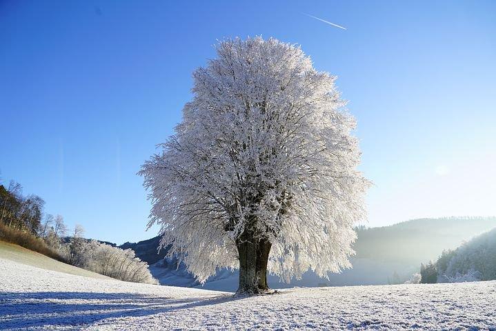 冬でも紫外線を浴びている